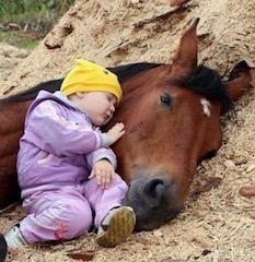 Immagine di un bambino addormentato con il capo appoggiato sulla testa di un cavallo disteso