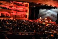 Visione d'insieme del pubblico con il palco e la band ripresi sullo sfondo a destra.